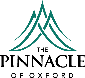 Medium sized Pinnacle of Oxford Logo