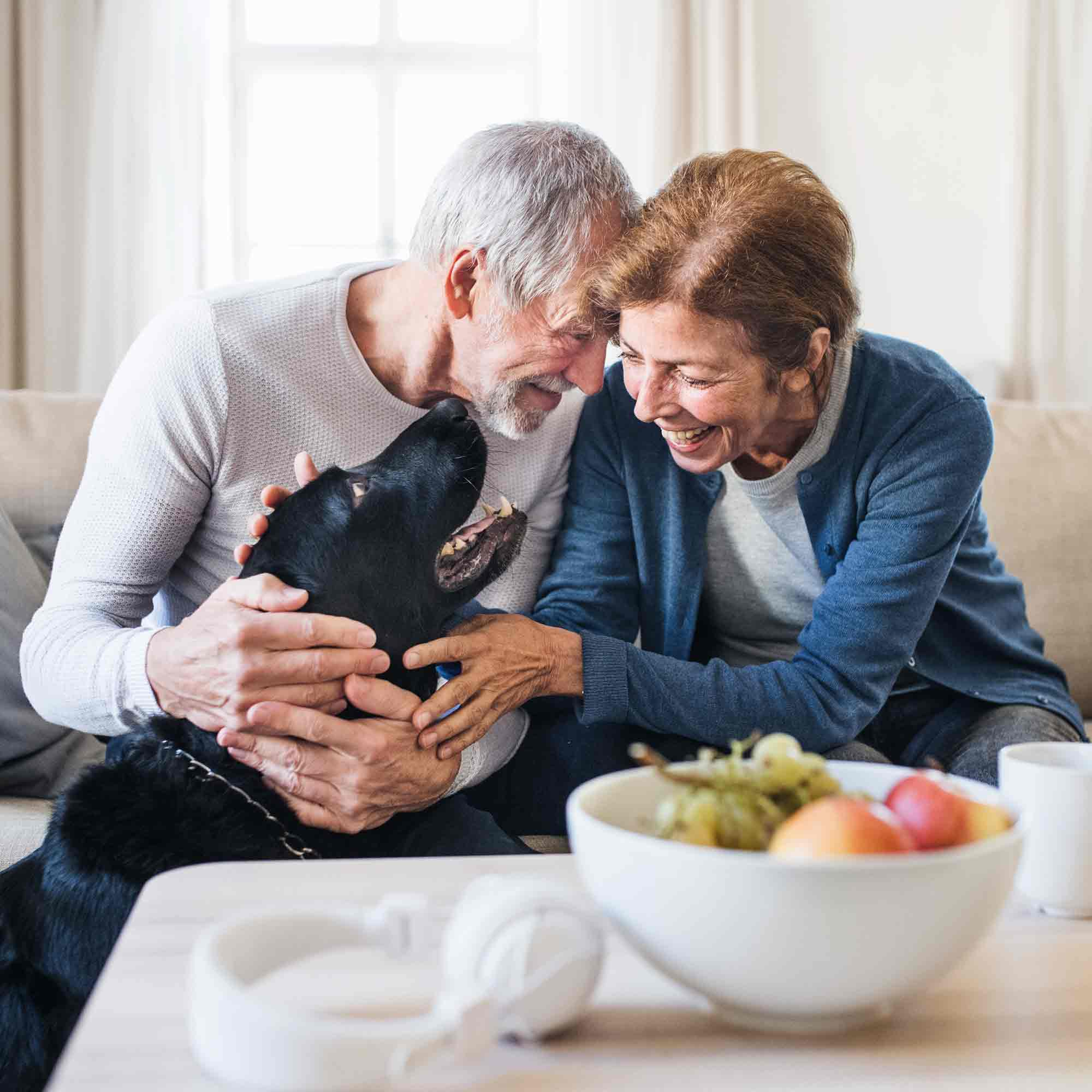 Senior couple petting their black dog with a bowl of fruit on a table in front of them